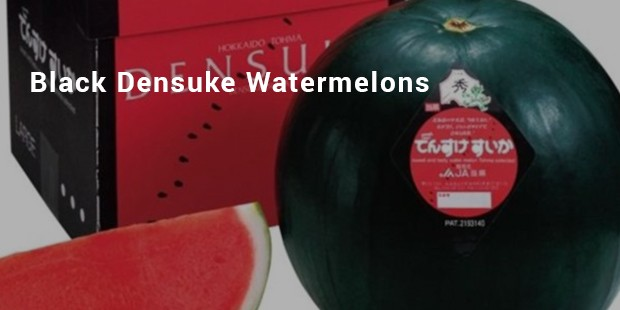 black densuke watermelons
