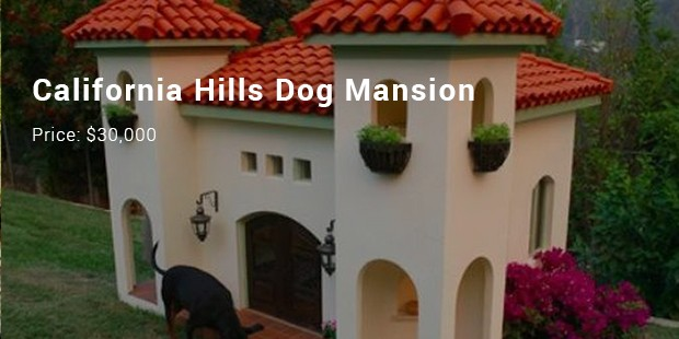 california hills dog mansion