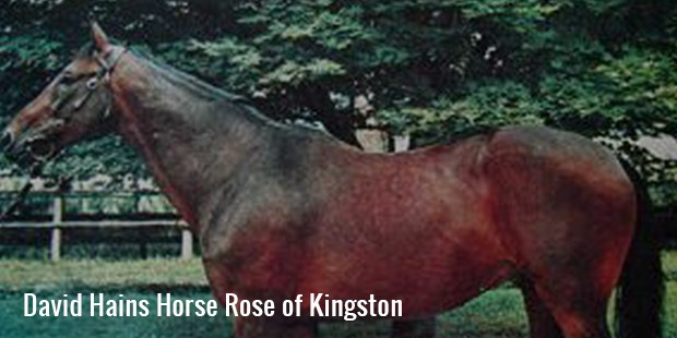 david hans rose of kingston