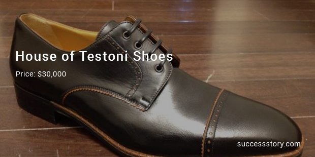 house of testoni shoes