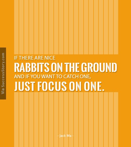 If there are nice rabbits