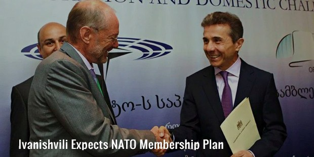 ivanishvili expects nato membership plan