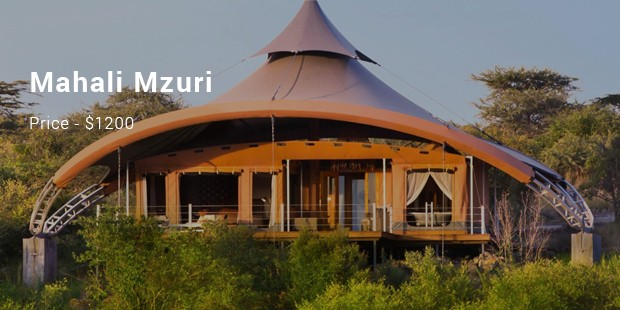 Mahali Mzuri comes up with as many as twelve safari tents for those who prefer to watch the games in action in great style and luxury. & 8 Most Expensive Tents List | Expensive Tents | SuccessStory