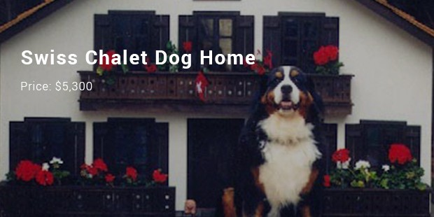 swiss chalet dog home