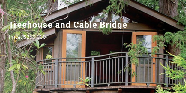 Treehouse and Cable Bridge