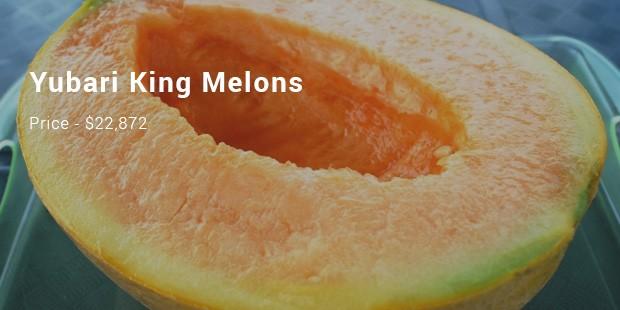 yubari king melons
