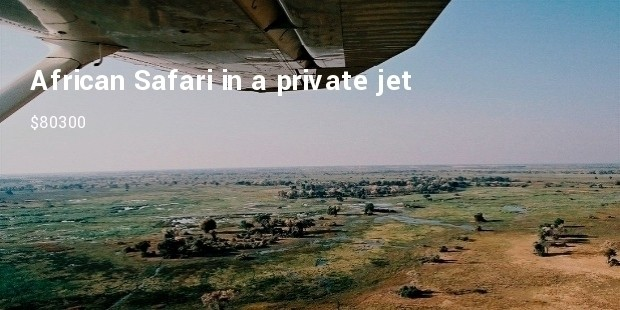 african safari in a private jet