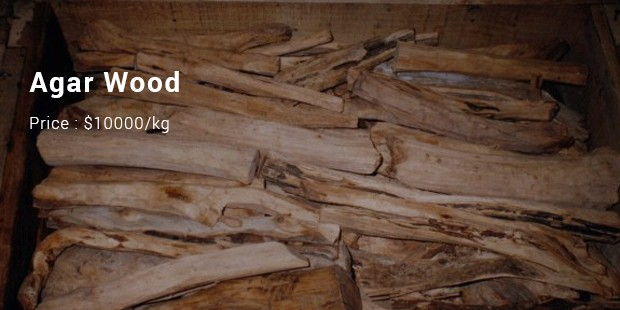 10 Most Expensive/ Priced Wood List | SuccessStory