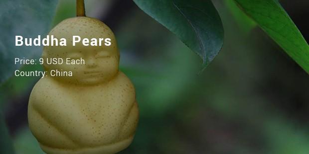 buddhapears