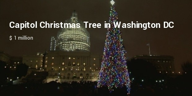capitol christmas tree in washington dc