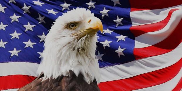 eagle 219679