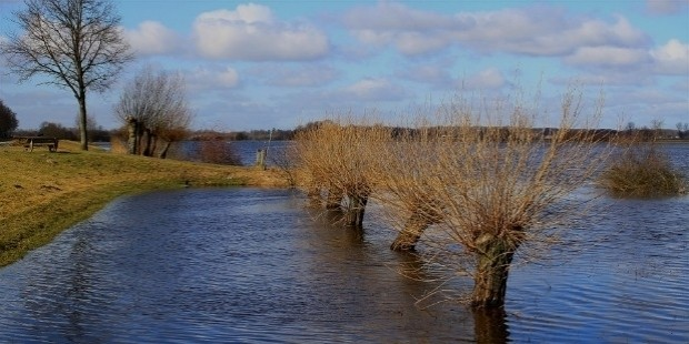 flood 456696