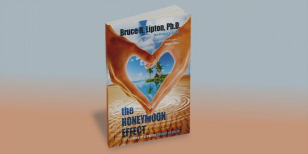 honeymoon effect book