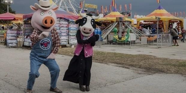 Local Fair or a Fest