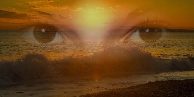 perceptive and observant