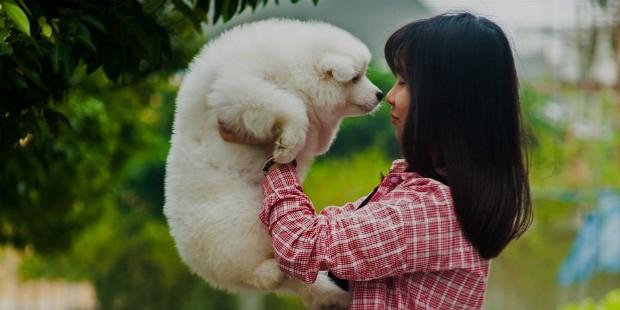 pets reciprcate love
