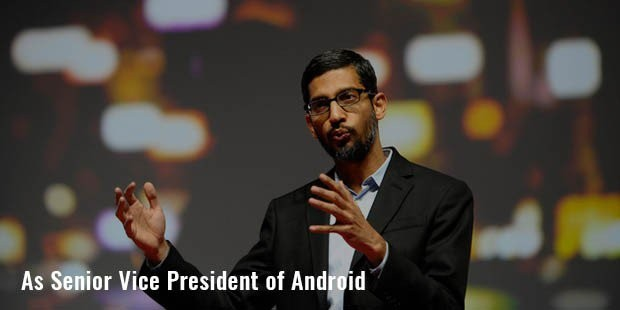 senior vice president of android