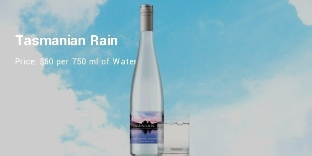tasmanian rain water bottle