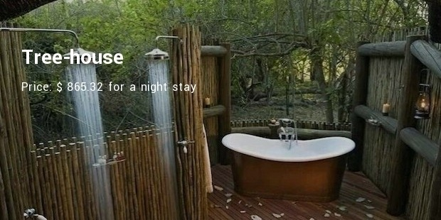 Tree House. Does This Name Sound Unfamiliar And Exotic? Yes, It Is The Name  Of A Bath Room. This Is Available In Lions Sands Game Reserve In South  Africa.