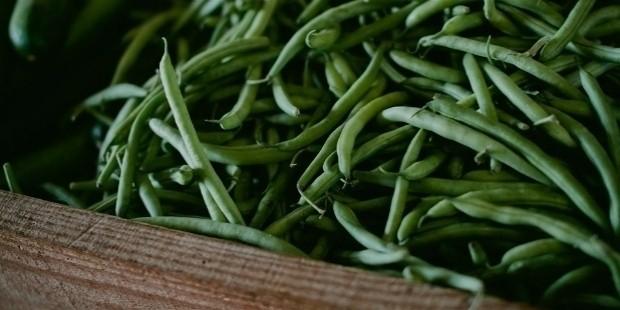 vegetable 642119