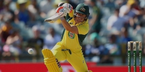 warner batting