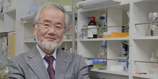 Yoshinori Ohsumi Google Scholar
