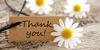 Phrases to Convey Gratitude