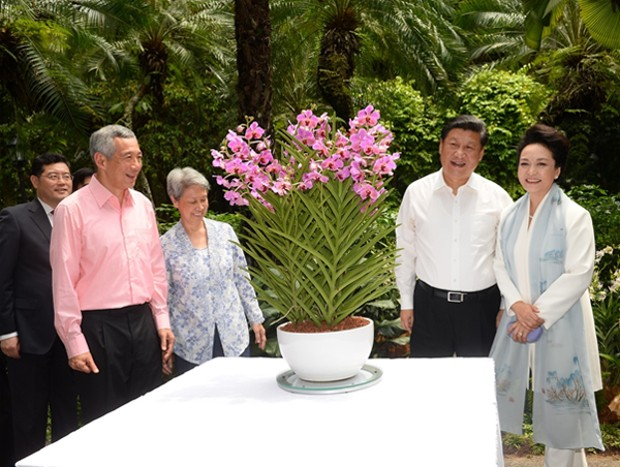 Prime Minister Lee Hsien Loong and his wife Ho Ching together with President Xi Jinping and his wife Peng Liyuan