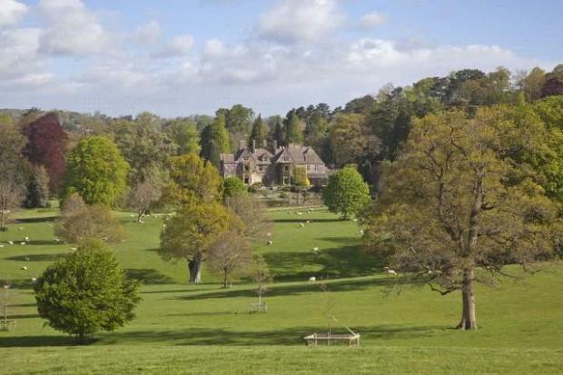 Greenery in the estate
