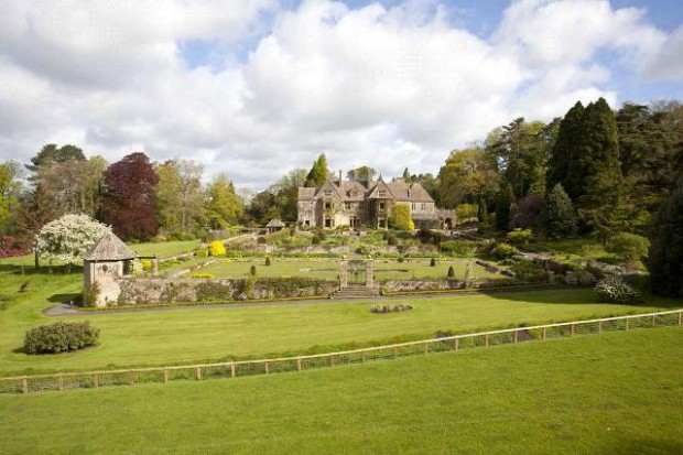 Beautiful garden in estate