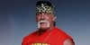 Hulk Hogan Success Story