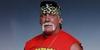 Hulk Hogan Success Story