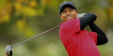Tiger Woods Success Story