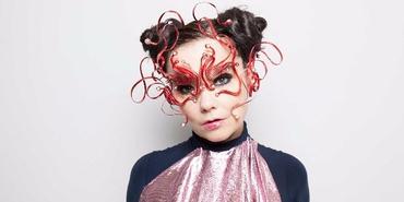 Björk Guðmundsdóttir Story