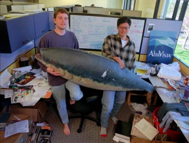 Jerry and David at Yahoo