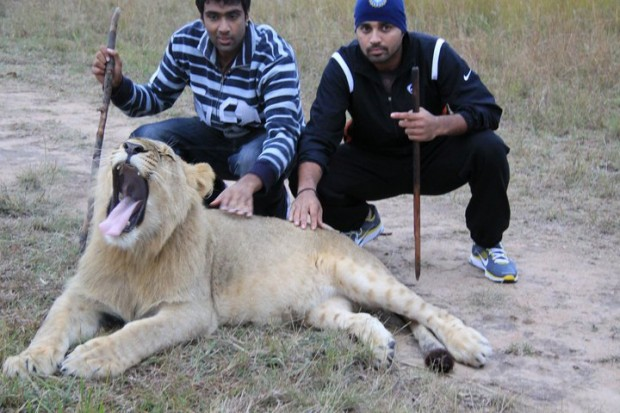 Ashwin and Vijay with a Lion