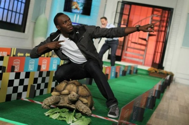 Usain Bolt posing with his winning tortoise at a tortoise race