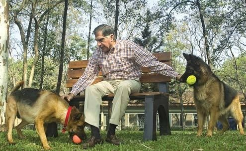 Ratan Tata Having a Fun Time with His Dogs