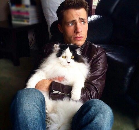 Colton Haynes with a cute cat