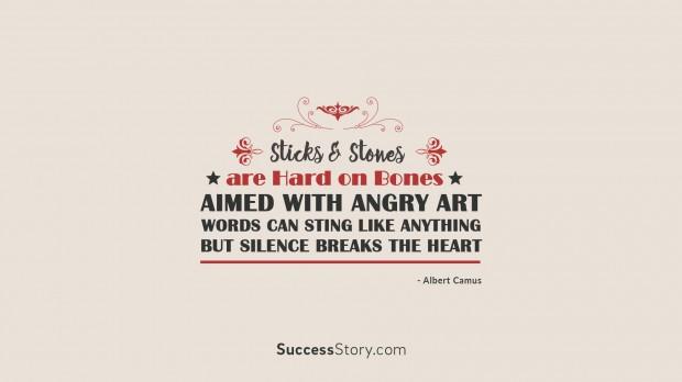 sticks   stone