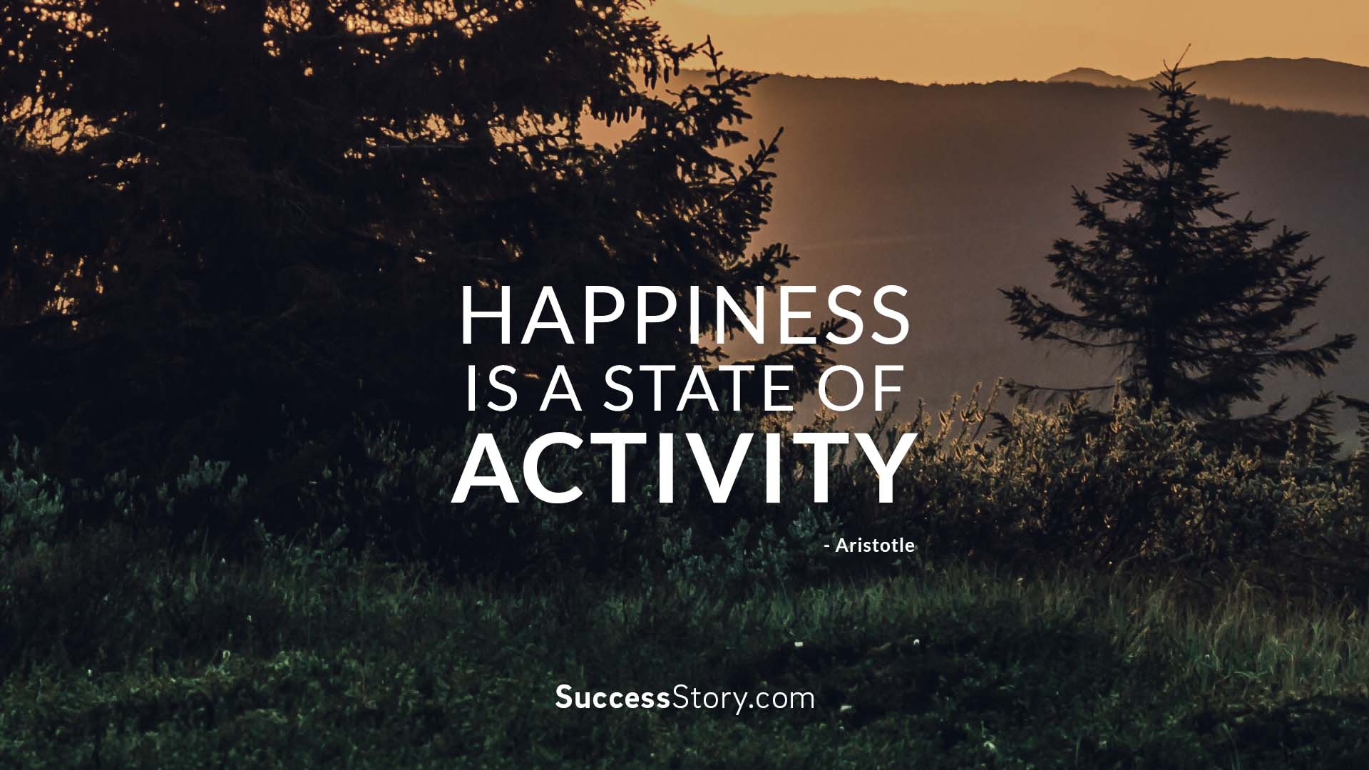 Happiness is a