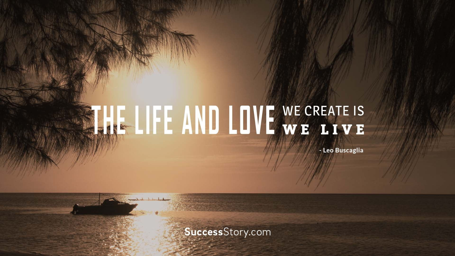 The life and love w