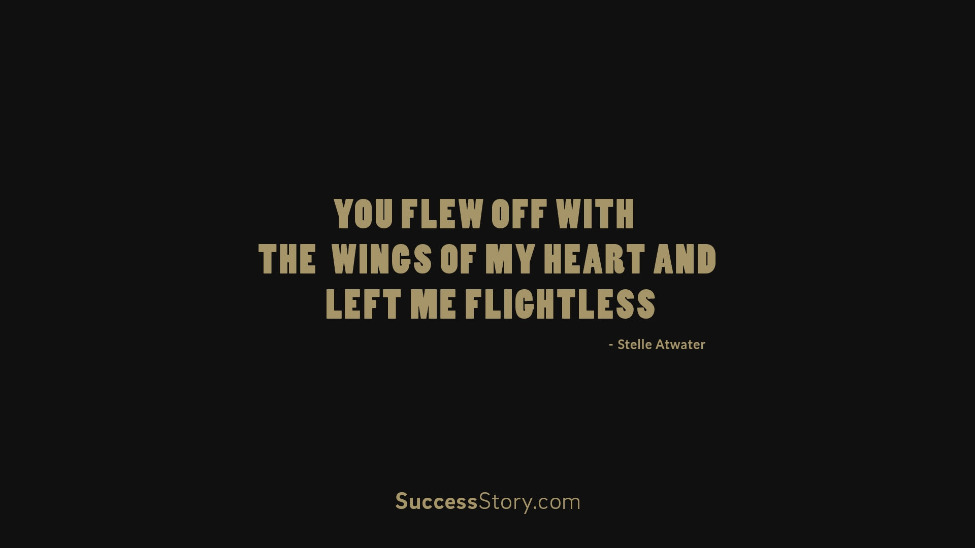 you flew