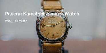Most Expensive Panerai Watches