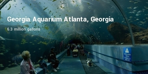 Most Expensive Aquariums in the World