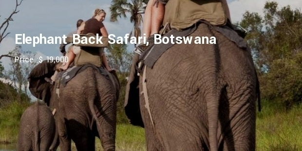 Most Expensive African Safari